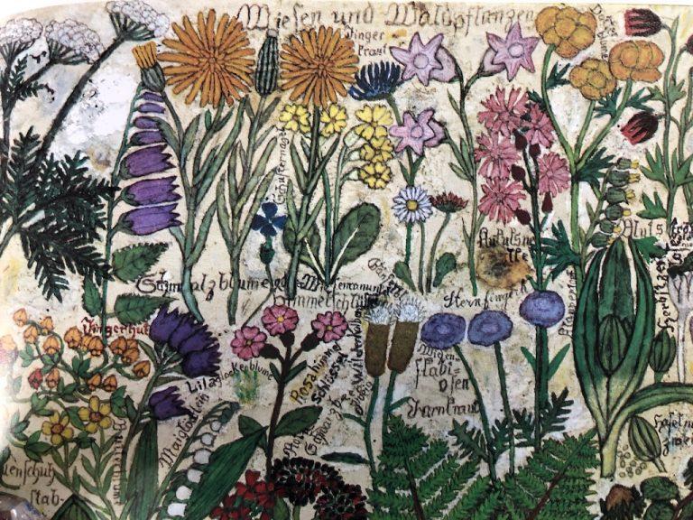 Blumen von Max Raffler